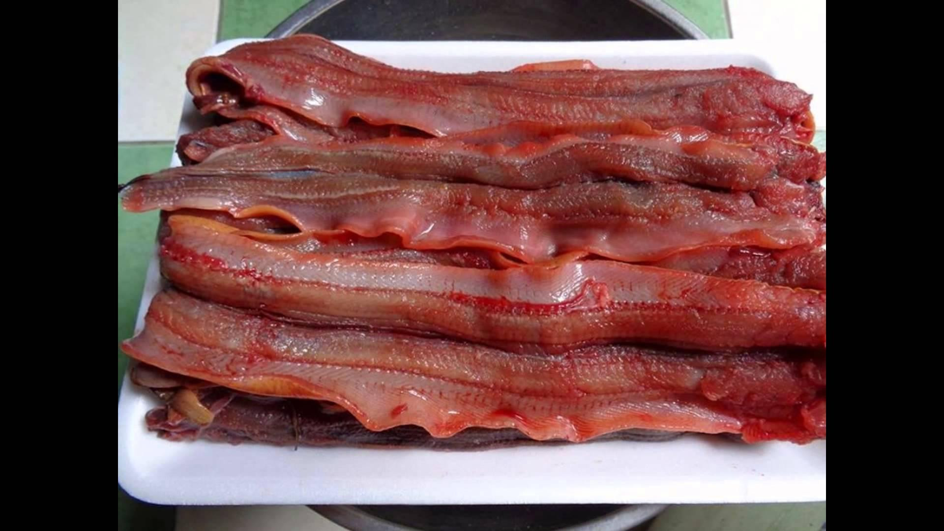 cách nấu cháo lươn ngon ngọt không tanh 2