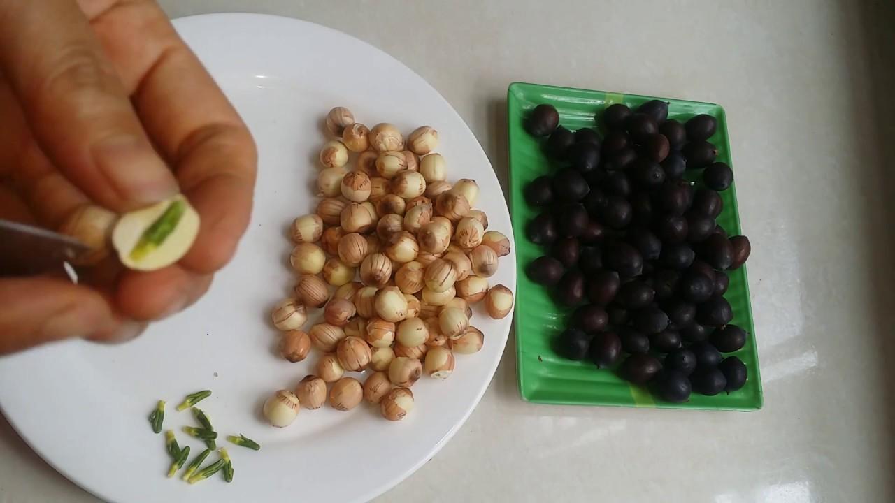cách nấu chè đỗ đen với hạt sen