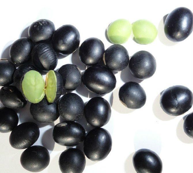 Bạn có biết đậu đen xanh lòng chữa bệnh gì?