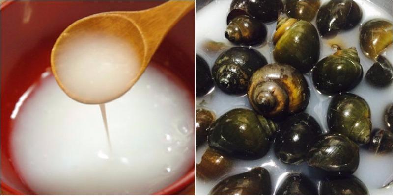 cách làm món ốc xào măng ngon