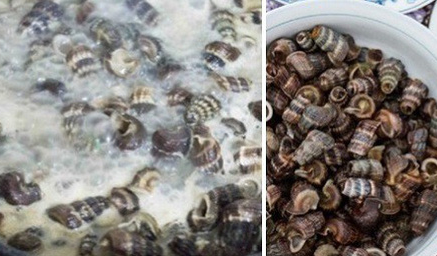 cách làm ốc len xào nước cốt dừa