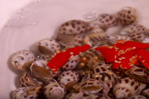 cách luộc ốc biển ngon